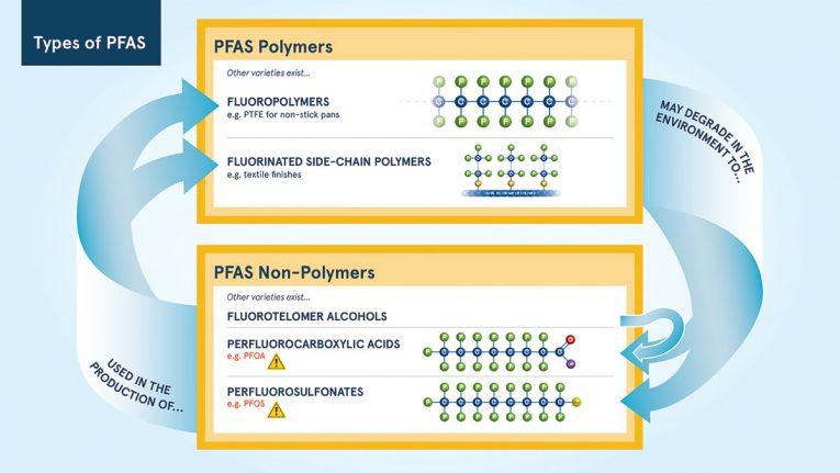 types of pfas diagram