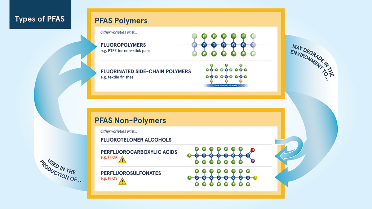 types of pfas diagram